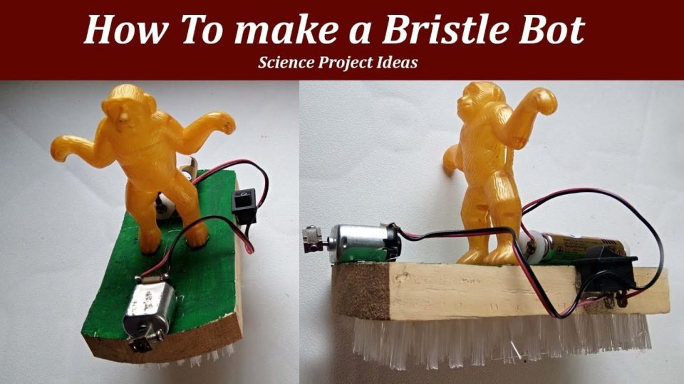How To make a BristleBot - Science Project Ideas